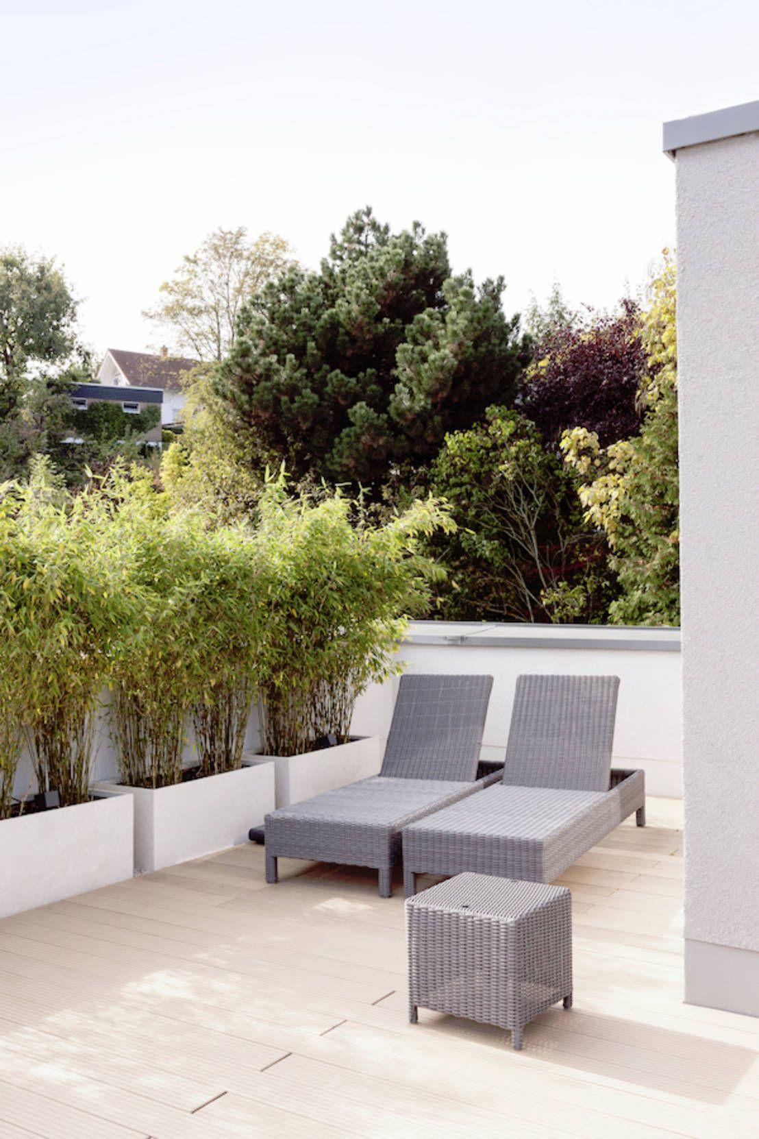 dachterrasse mit blick auf die frankfurter skyline : moderner, Gartengerate ideen