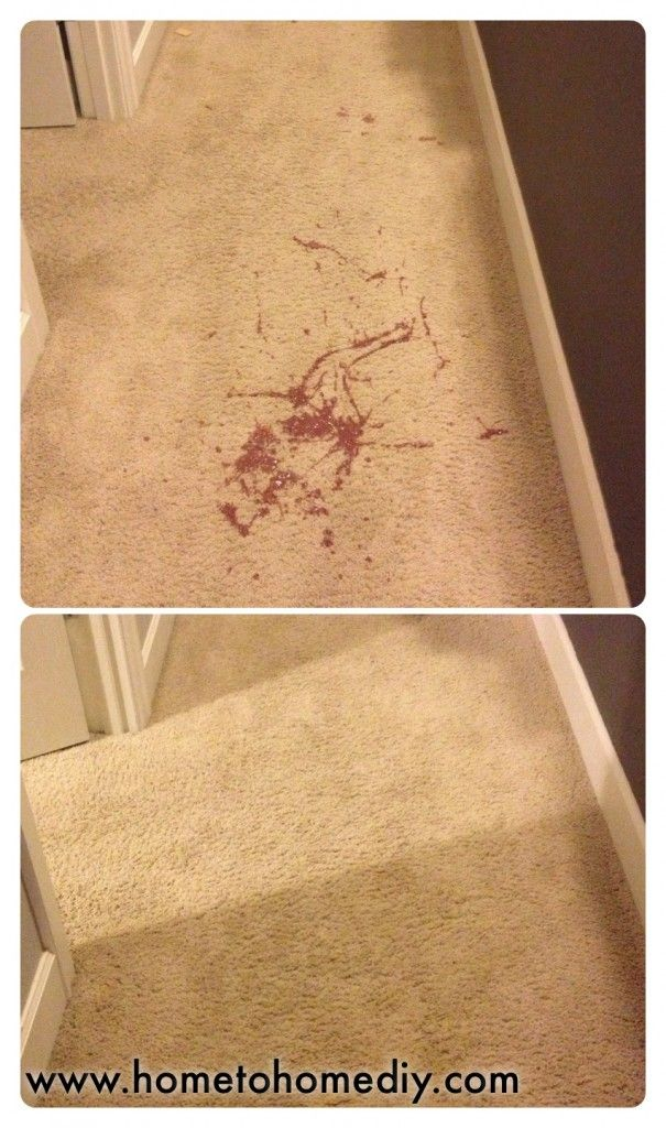 How To Get Throw Up Out Of Carpet >> A Must For Any Parent Or Pet Owner How To Easily Clean