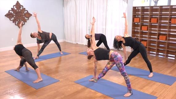 Best Yoga Classes Online Free Online Yoga Class Videos Instructions The Yoga Collective Here S To Your Health Online Yoga Classes Yoga Yoga Lesso