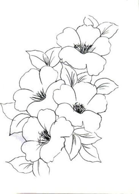 【Ücretsiz indirin】 Boyamak Için çiçek Resmi