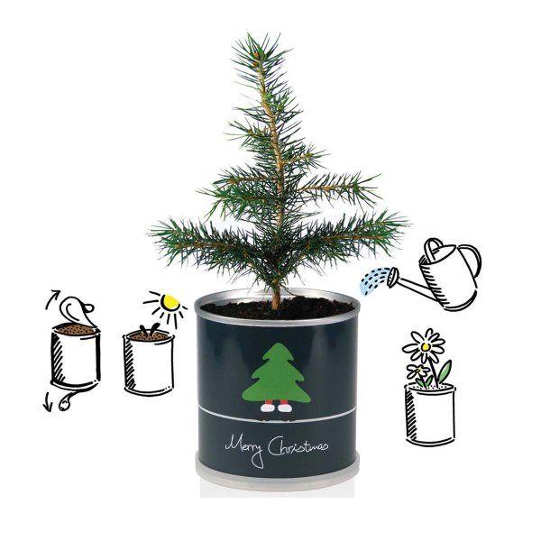 Weihnachtsbaum Merry Christmas aus der Dose