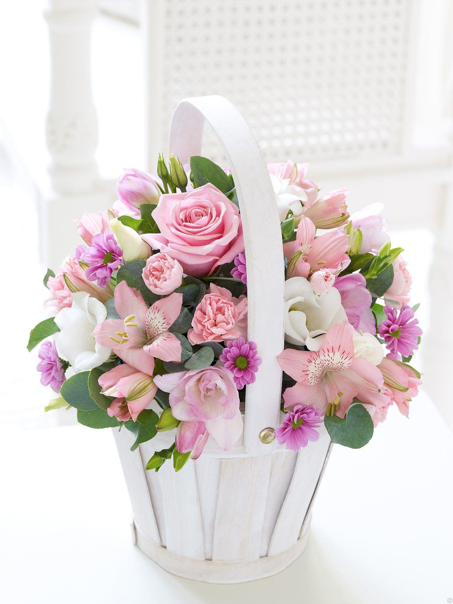 Pin by ania misiak on kwiaty pinterest beautiful flowers and flowers flowers izmirmasajfo