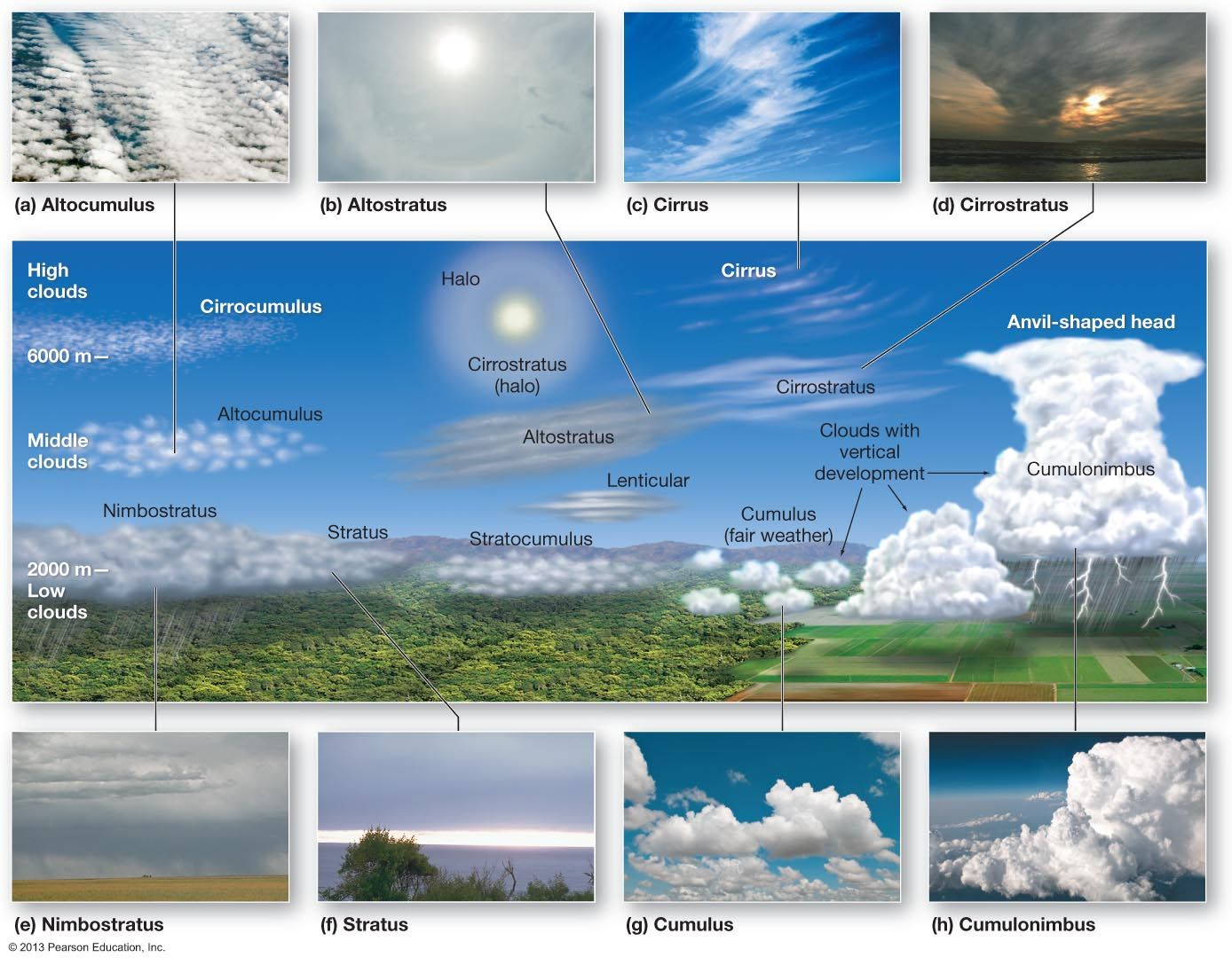 Various Types Of Clouds Clouds Weather Science Cloud Type