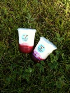 Glenilen Farm large natural yoghurts with fresh fruit compot