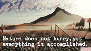 Everything is accomplished... #nature #walk #hiking #lionshead #capetown #mothercity #campsbay #art #quote #beachvolleyball