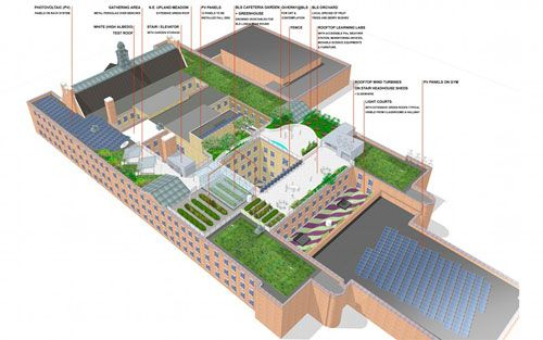 Best Sustainable Green Roof Design Green Roof Green Roof 400 x 300