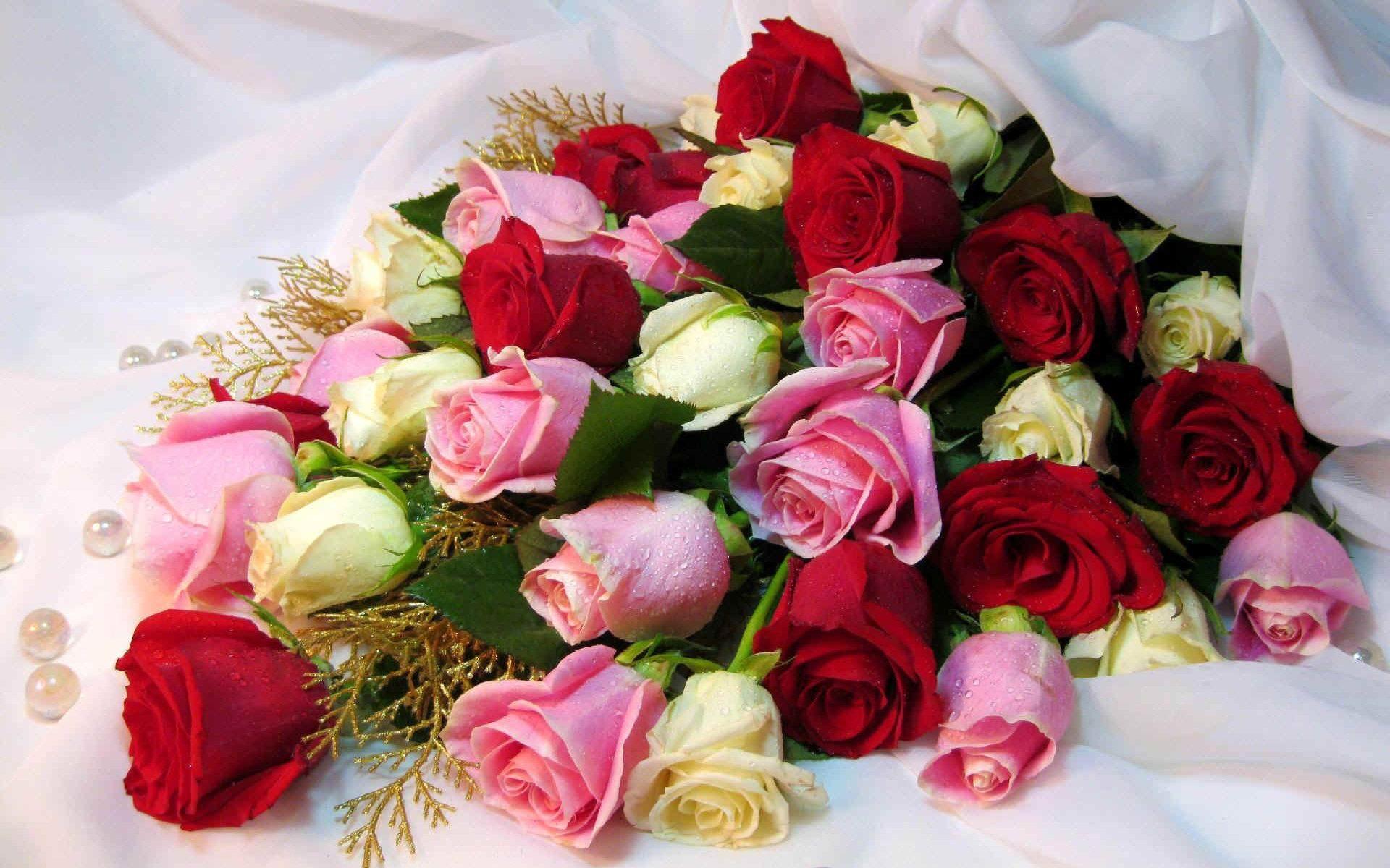 Rose Wallpaper Free e Plans Ideas Picture