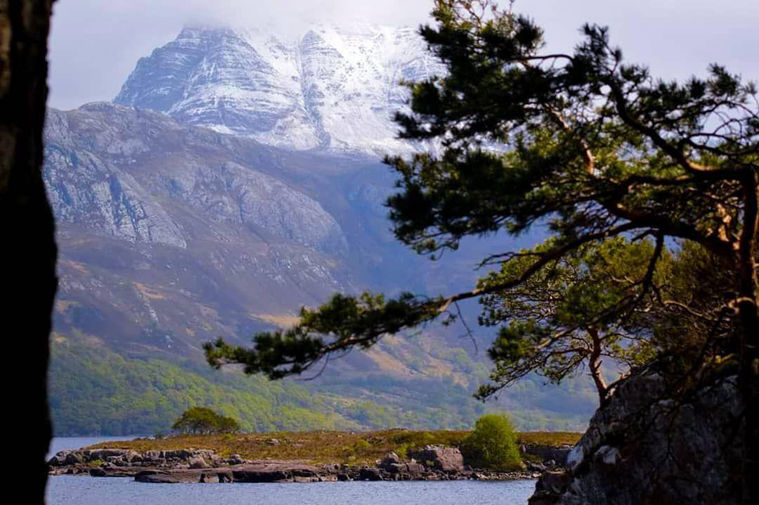 Pinetree Munro Island Loch Lake Trees Snow Mountain Landscape Landscape Lovers Pinetree Munro Mountain Landscape Mountains Landscape Photography