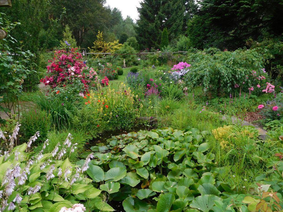 Naturgarten Der Familie Hentschke Rosenfreunde Braunschweig Naturgarten Garten Natur