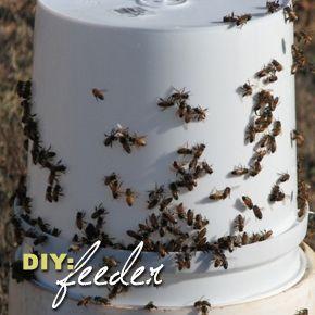 Bee Feeding Stations Keeping Backyard Bees Backyard Bee Bee Feeder Bee