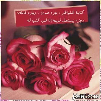 رمزيات خواطر وتساب بلاك بيري خلفيات واتس اب عبارات بي بي منتدى جدايل Beautiful Flowers Rose Flowers