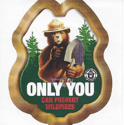 Our Newest Smokey Bear Items Prevent Wildfires Sticker Smokey Smokey The Bears Bear Cartoon
