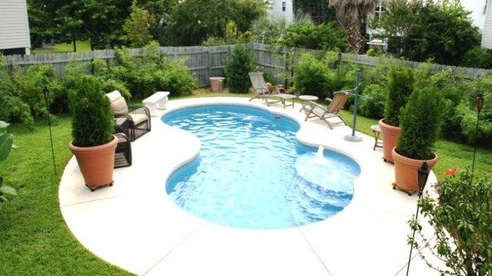 Small Kidney Shape Inground Pool Design with Umbrella Outdoor