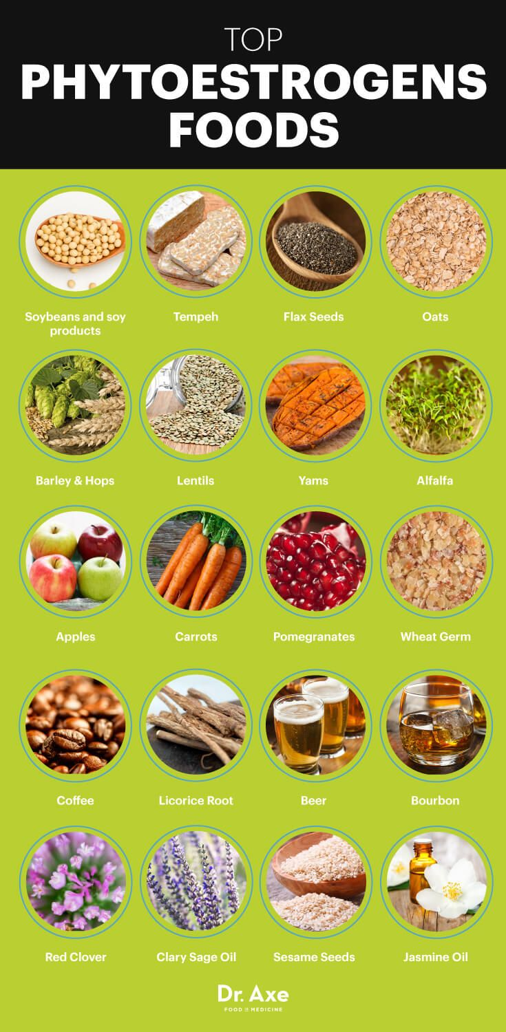 Nutritious Snacks for Every Craving
