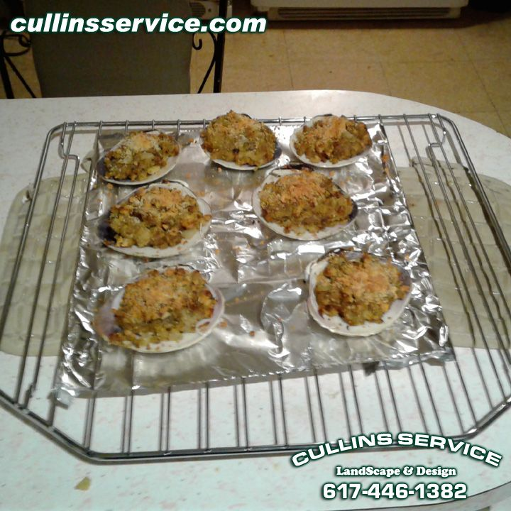 Made some homemade stuffed baked clams newengland diy