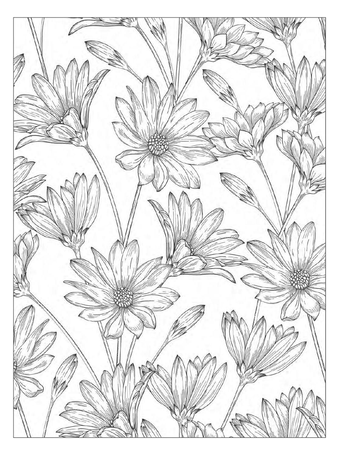 Beautiful Flowers Detailed Floral Designs Coloring Book Preview Designs Coloring Books Flower Coloring Pages Coloring Books