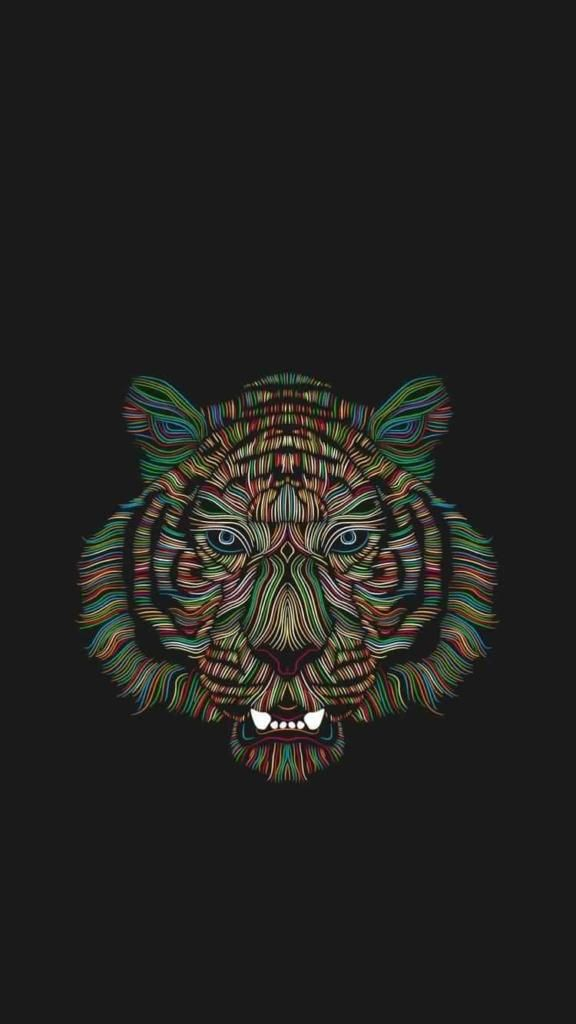 Cool Iphone Wallpapers Iphone7 Iphone8 Tiger 4k