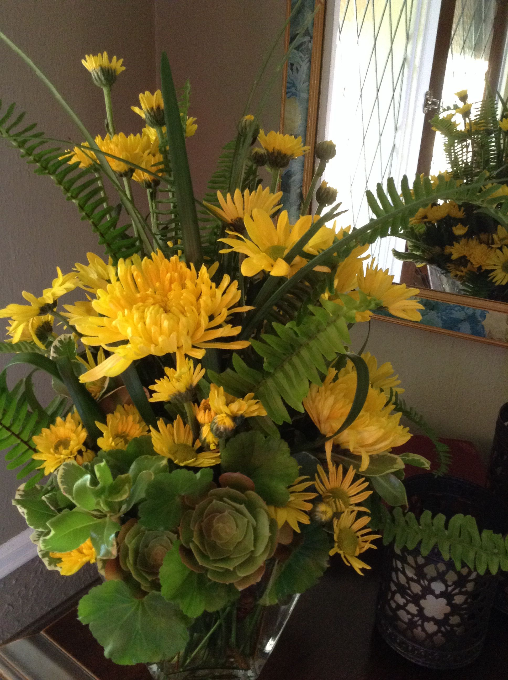 Yellow daisies & succulent bouquet for Mother.