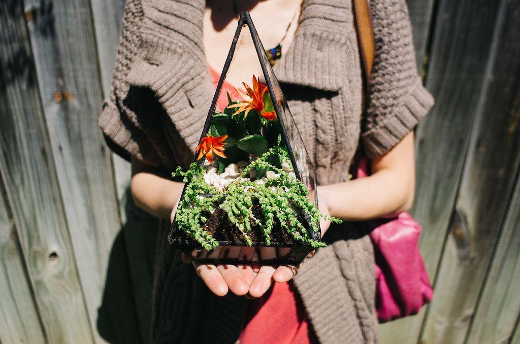 Флорариум своими руками: пошаговый мастер-класс по созданию потрясающего мини-сада за стеклом http://happymodern.ru/mini-sad-za-steklom-delaem-florarium-svoimi-rukami/ Геометрический флорариум своими руками станет отличным подарком для близкого человека Смотри больше http://happymodern.ru/mini-sad-za-steklom-delaem-florarium-svoimi-rukami/