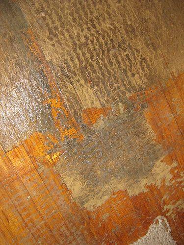 Carpet Padding Moster Meet Thy Doom