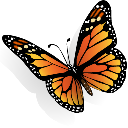 Картинки по запросу бабочка монарх пнг