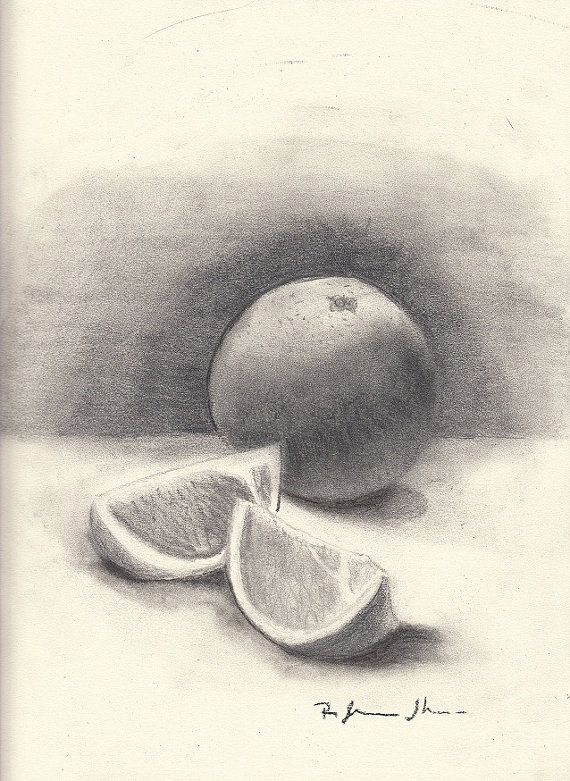 Pencil Drawing Orange and Slices by StyllLifes on Etsy ...