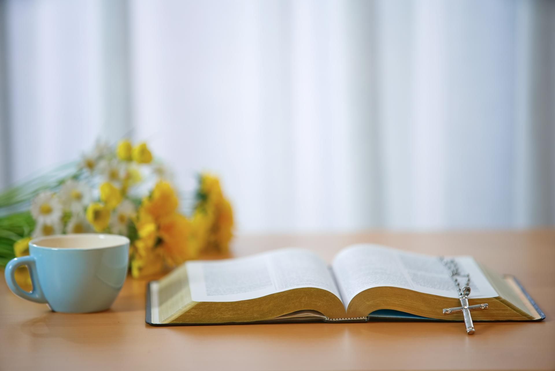Lesung Des Tages Katholisch