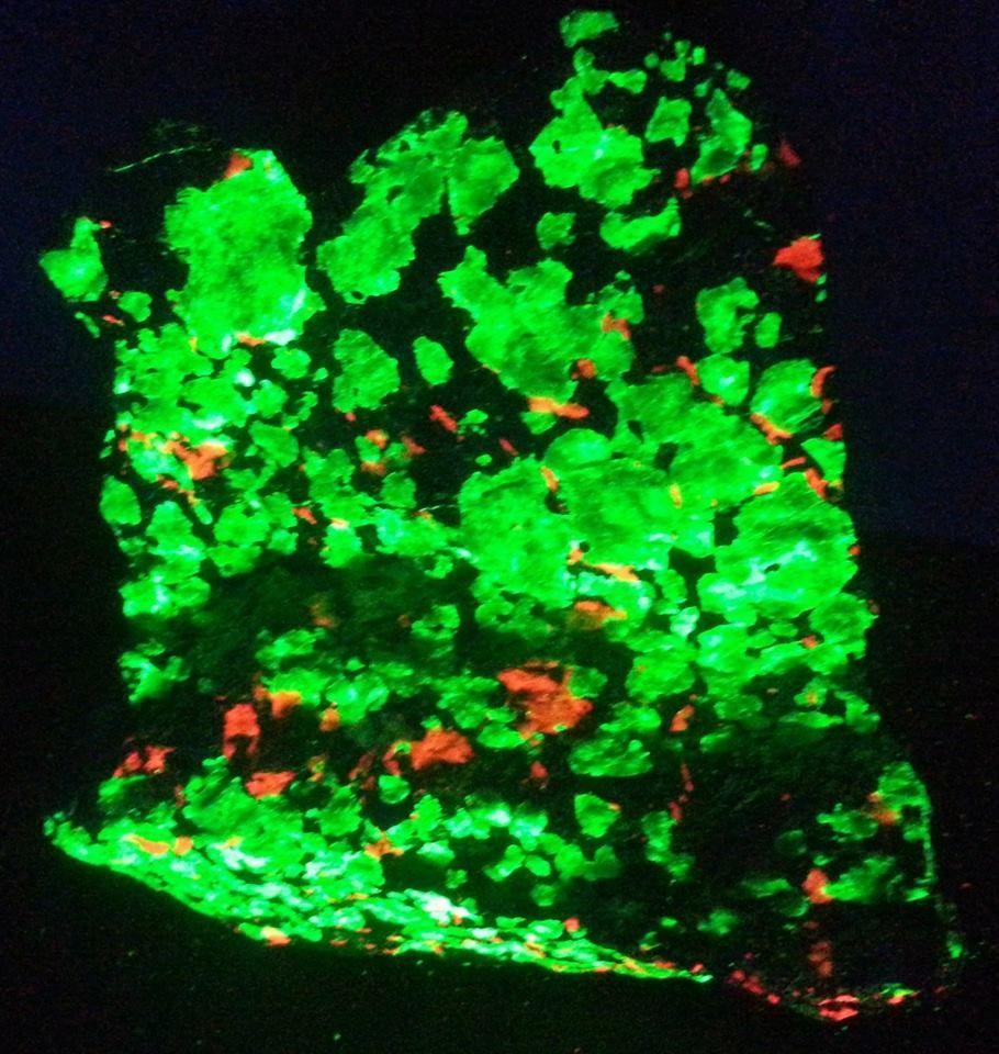 "Willemite, Franklinite, Calcite-  Sterling Hill Mine, Ogdensberg, New Jersey.  4"" across.  SW UV Light."