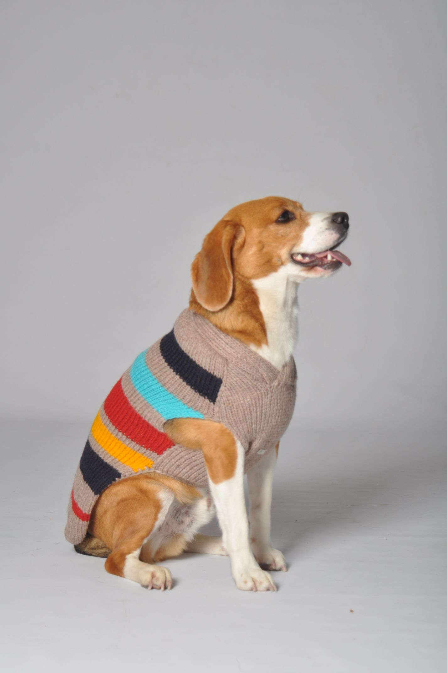 Wow They Re Here Our New 100 Organic Wool Fair Trade Dog