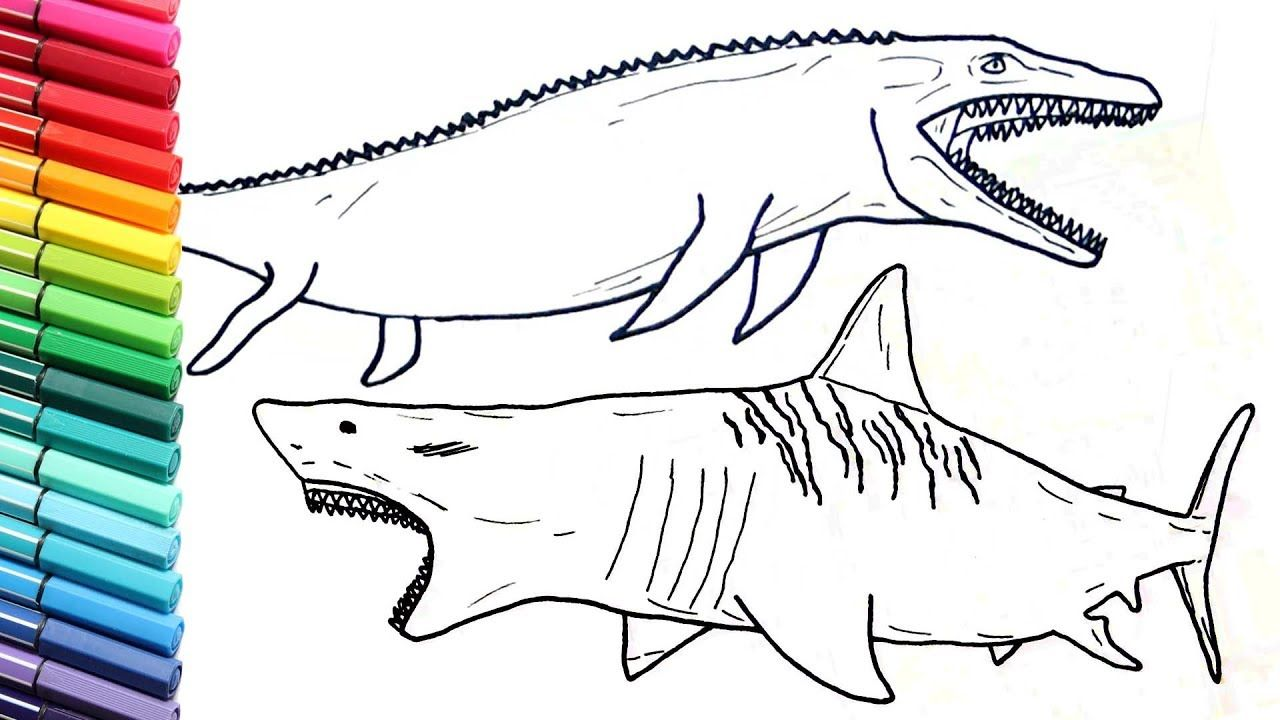Shark Coloring Pages Pdf Printable Free Coloring Sheets Shark Coloring Pages Shark Coloring Shark Coloring Page