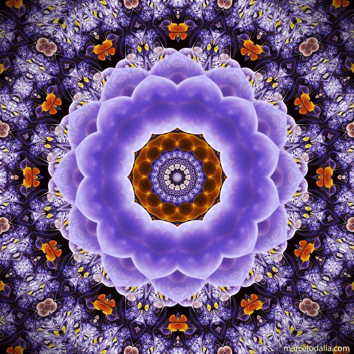 https://flic.kr/p/dsEvkB | Floral Lavanda
