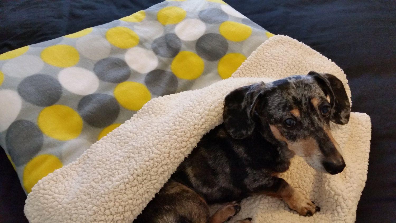 Dog Burrow Bag Dog Snuggle Sack Dog Sleeping Bag Dog Bed Dog Blanket Doxie Burrow Bag Dachshund Bed Cat Burrow Bag Cat Snug Dog Blanket Dogs Snuggles