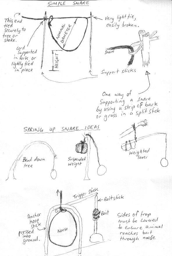 Daryd Departamento De Anestesiologa Reanimacin Y Tratamiento Del  Fletcher Munson Curve Essay Format