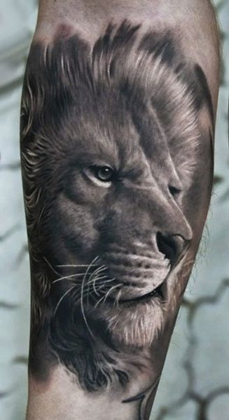 Pin by Keith Westerman on Tattoo Ideas | Tattoos, Mens lion