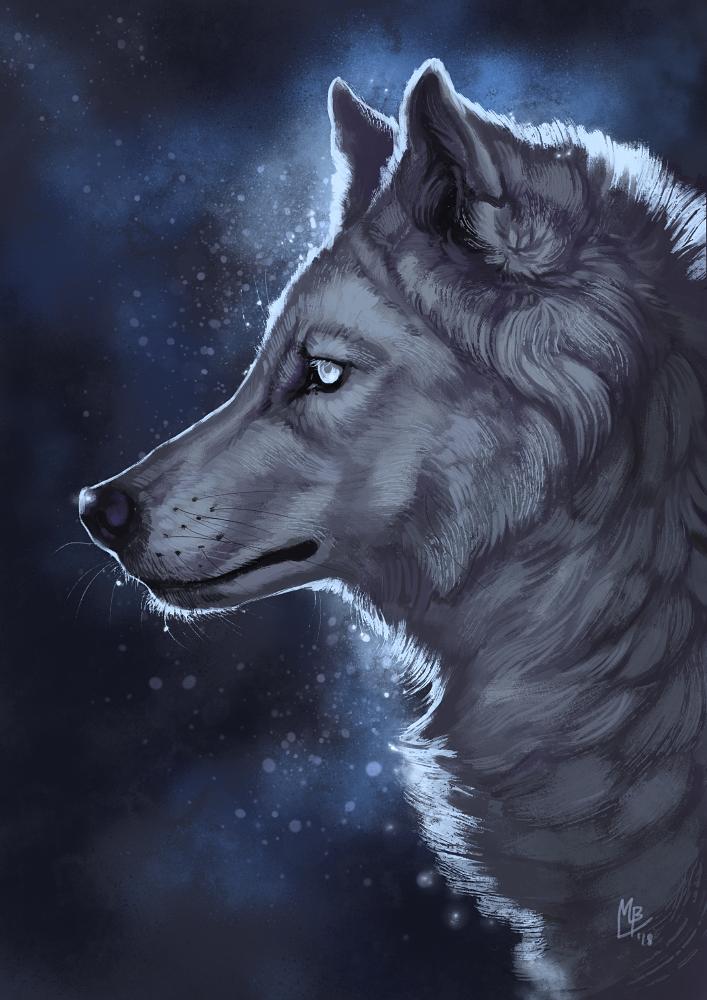 Void ii by wolf minori.deviantart.com on @deviantart wolf