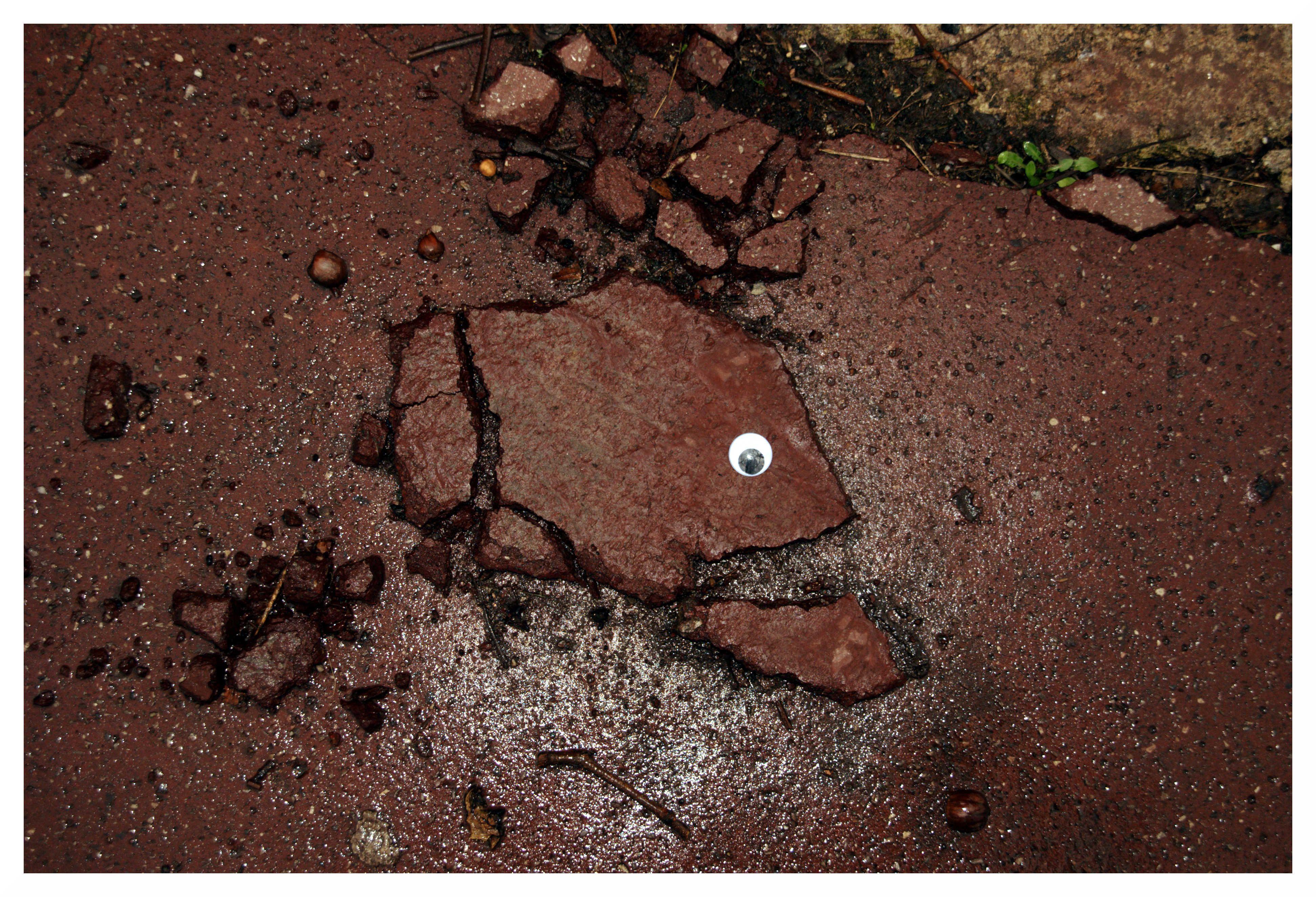 Metamorphosis Eye Bombing  By Ladamenrouge  Street Art  St Etienne : Facebook - Fatcap -Tumblr - Twitter - Flickr - Wix - Youtube