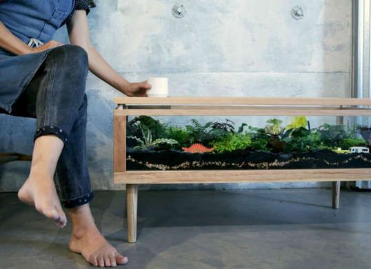 Wonderful Coffee Table Planter