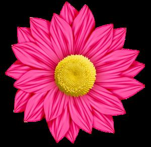 August Natural Forms Flower Wallpaper Fall Clip Art Flower Clipart