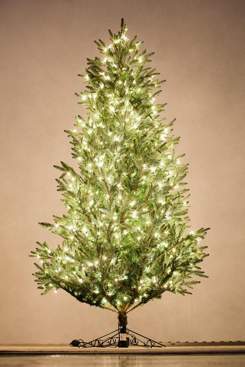 Holiday Bright Lights 7 5 Feet Tall Carolina Fraser Fir Best Premium Artificial Christmas Tree With Clear W Artificial Christmas Tree Fraser Fir Christmas Tree