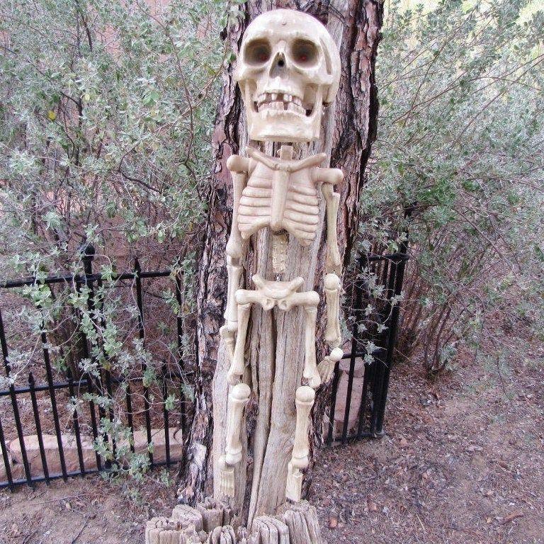 Animated Laughing Halloween Skeleton, Halloween Décor