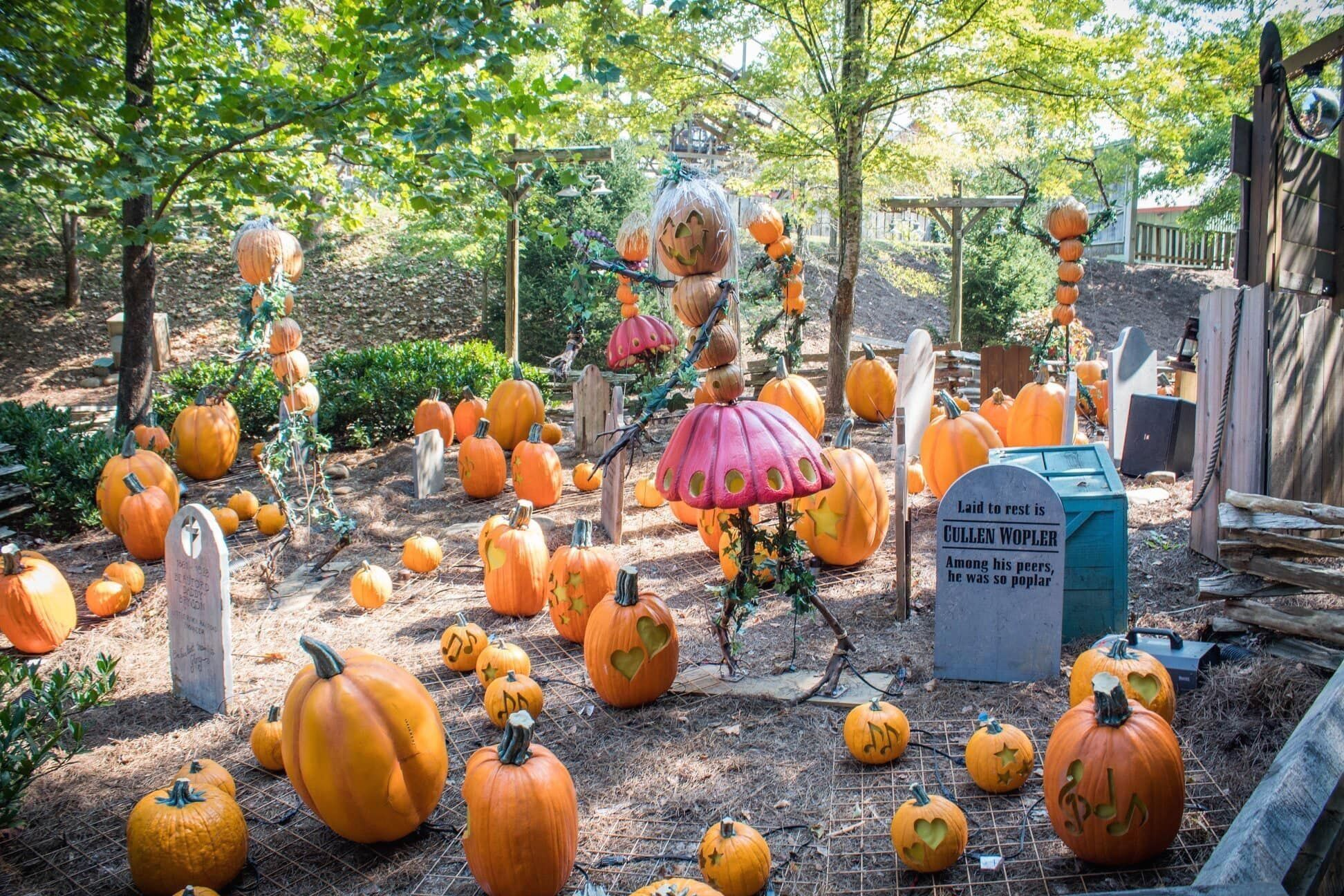 Dollywood S Harvest Festival Great Pumpkin Luminights Features Artistic Sculp 1000 In 2020 Harvest Festival Pumpkin Harvest
