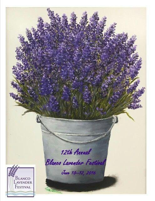 Blanco Lavender Festival ♡