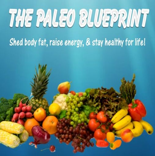 The paleo diet blueprint app paleo recipe ideas pinterest the paleo diet blueprint app malvernweather Images