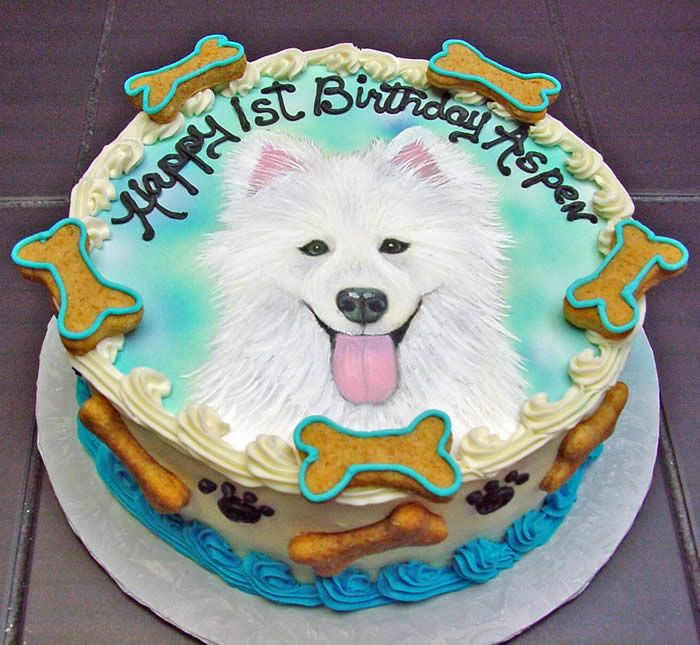 I Buy One Of These Every Year For My Dogs Birthday Theyre Awesome Best Friend Pet Bakery Cakes And Cats Dog Cat Picture