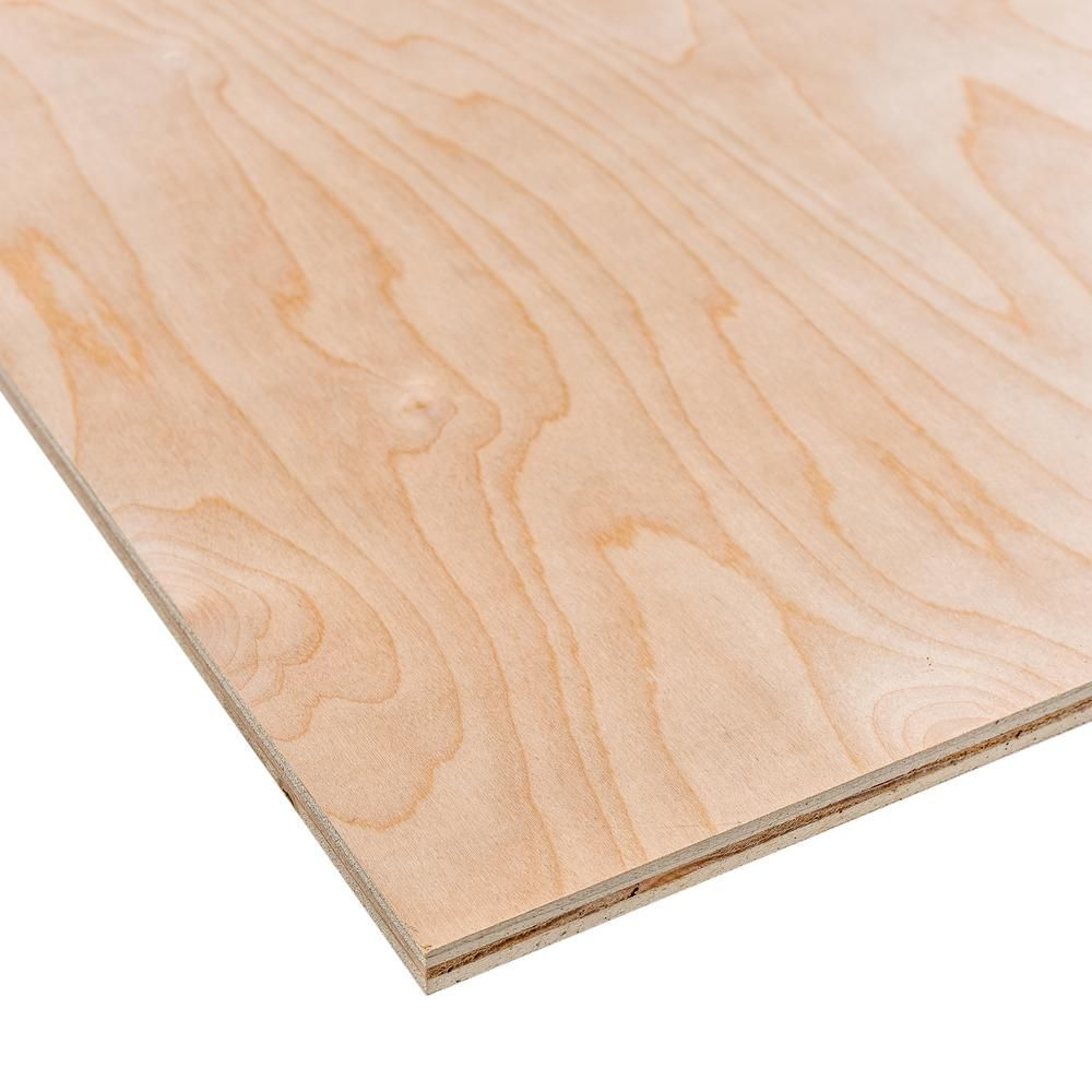 Dimensions Sande Plywood Common 1 2 In X 2 Ft X 4 Ft Actual 0 472 In X 23 75 In X 47 75 In 225474 The Home Depot Hardwood Plywood Birch Plywood Plywood