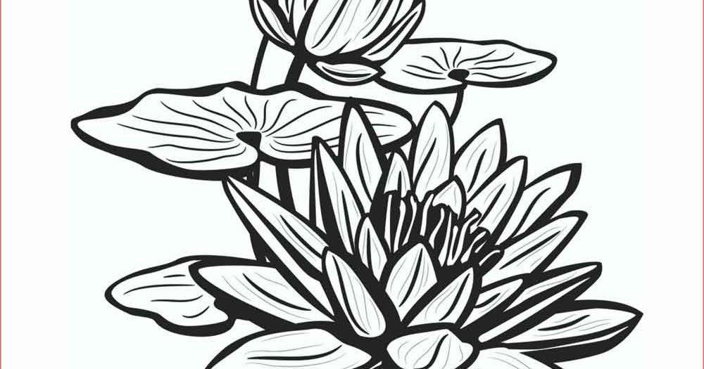 Paling Populer 17 Gambar Bunga Hasil Pensil 30 Gambar Sketsa Bunga Mudah Bunga Matahari Mawar Tulip 16 Contoh Gambar Sketsa Bun Di 2020 Sketsa Bunga Cara Menggambar