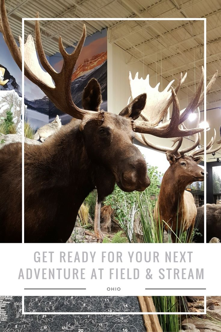 Get Ready for your Next Adventure at Field & Stream