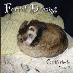 "Ferret Dreams:  Crittertude, Volume 3.  How much trouble can an eclectic bunch of cats, birds, a white fluffy dog and one squiggly ferret get themselves into while living under the same roof? Gather a glimpse into the magical realm of possibilities: Alien abduction, time travel, mechanical finches, a devious plot to take over the world (again) and, just perhaps, an unattainable desire to answer a ferret's ultimate question, ""Yes, but who will feed me?""  Available from Amazon.com!"