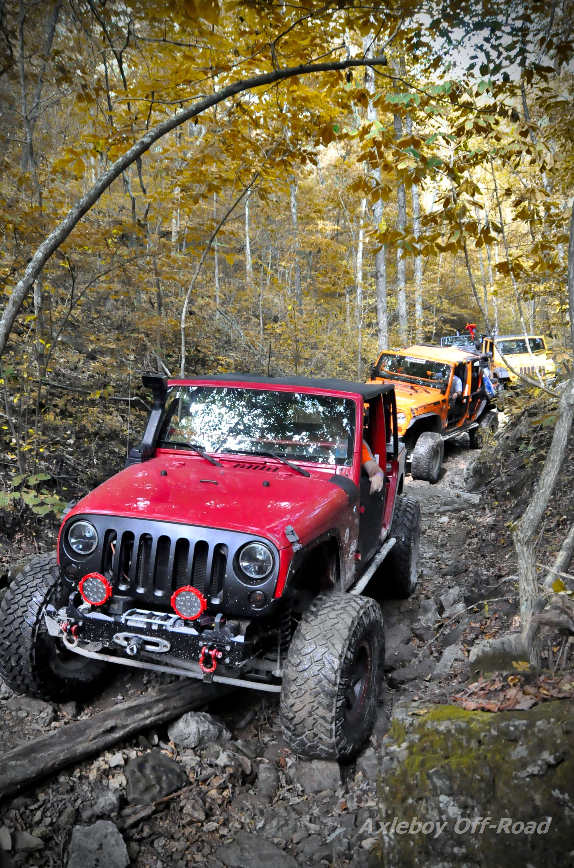 Jeep Trails Fall Colors Are In Full Bloom Along The Jeep Trails Axleboy