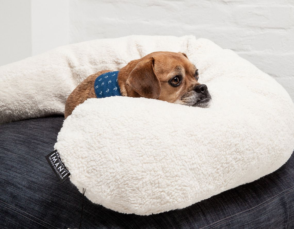 IMANII Cocoon ,Fluffy', a mobile pillow for dogs. Limited European design. www.imanii.com